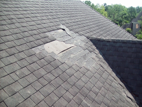 shingle damage on roof