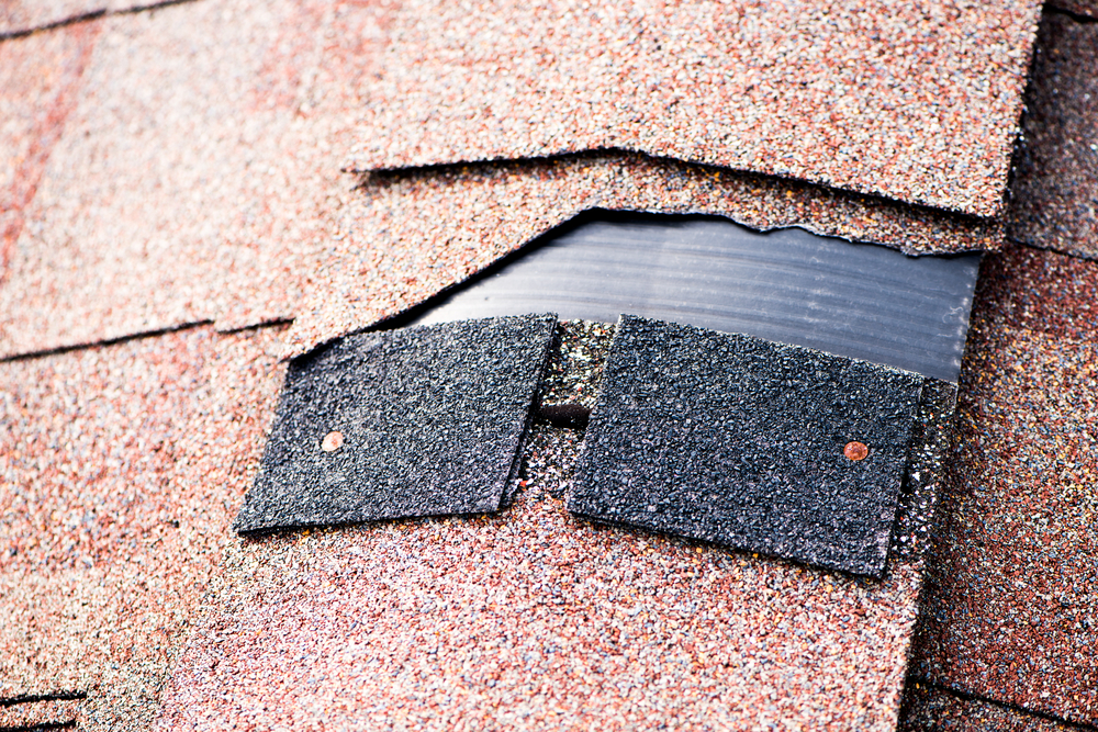damaged shingle