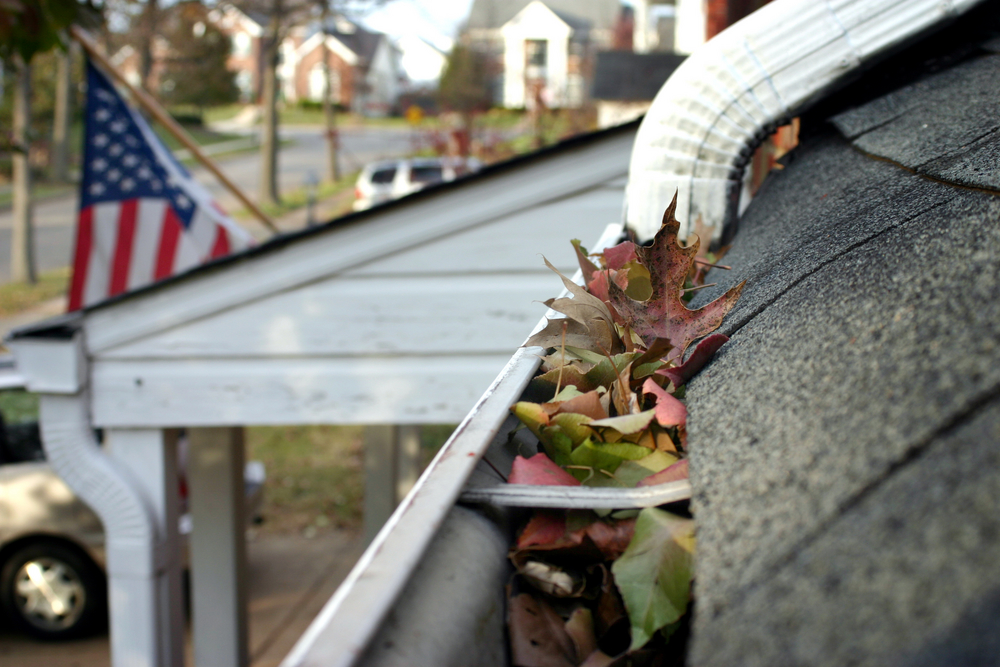 Fall Gutter Maintenance