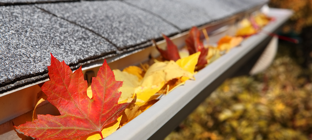 Must-Do Roofing Tips For Fall