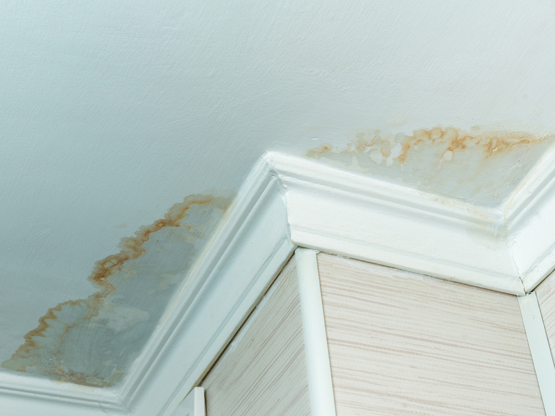 What Those Water Stains on Your Ceiling Mean and What to Do